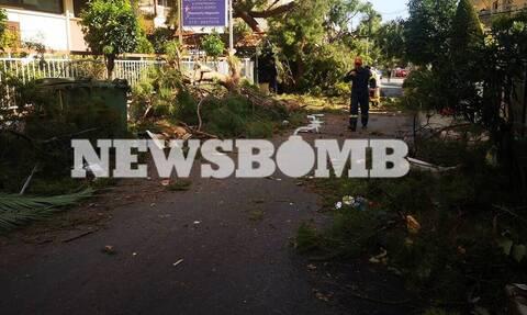 Νέο Ηράκλειο: Τρεις τραυματίες και μεγάλες καταστροφές