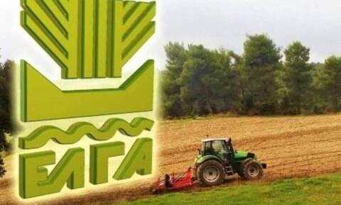 ΕΛΓΑ: Έρχονται αποζημιώσεις στους πληγέντες αγρότες της Εύβοιας