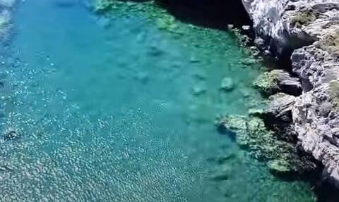 Ελλάδα: Η παραλία με την πιο άγρια ομορφιά είναι δίπλα σου