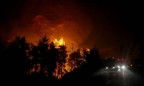 Φωτιά Κάρυστος: Τι λέει ο Δήμαρχος στο Newsbomb.gr