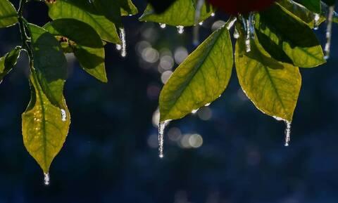 Καιρός: Η ψυχρή εισβολή ρίχνει κάτω από τους 0 βαθμούς τη θερμοκρασία