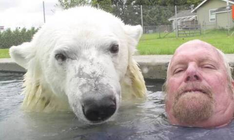 Απίστευτο: Κολυμπάει μαζί με μια πολική αρκούδα! (video)