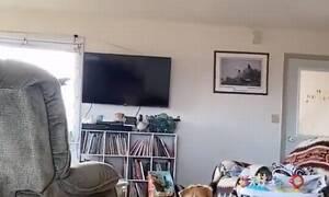 Σεισμός 7,5 Ρίχτερ: Το βίντεο που έγινε viral