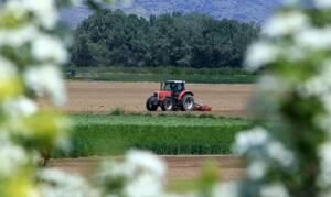 ΟΠΕΚΕΠΕ: Πληρώνονται οι αγροτικές επιδοτήσεις - Ποιοι θα δουν χρήματα στους λογαρισμούς τους