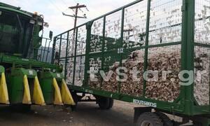 Τραγωδία στη Λιβαδειά: Φρικτός θάνατος 42χρονου ενώ μάζευε βαμβάκι (pics)