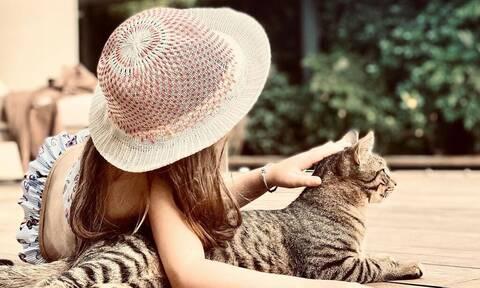 Ποιοι διάσημοι Έλληνες γονείς έχουν πάρει γάτα στα παιδιά για κατοικίδιο