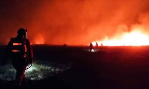 Φωτιά στη Σητεία: Στις φλόγες η περιοχή Χανδρά