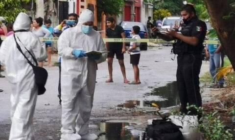 Τραγωδία: Τον καταβρόχθισε γουρούνι - Οι φρικτές εικόνες που αντίκρισαν οι διασώστες