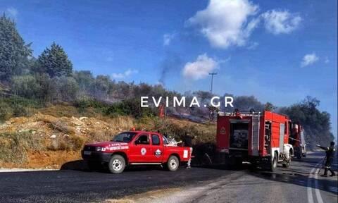 Φωτιά ΤΩΡΑ στην Εύβοια: Απειλεί κατοικημένη περιοχή