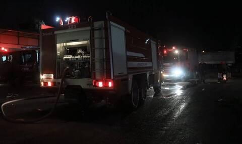 Εύβοια: Μεγάλη πυρκαγιά στο Μελισσώνα Καρύστου
