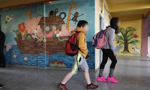 Δημοτικά σχολεία: Σήμερα οι αποφάσεις για το κλείσιμό τους - Τι είπαν Κικίλιας-Πέτσας
