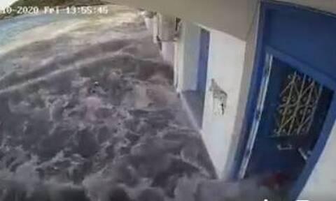 Σεισμός - Σάμος: Συγκλονιστικό βίντεο από το τσουνάμι στο νησί (vid)