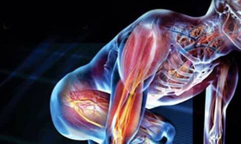 Το σημείο του σώματος μας που παρτυράει πόσα χρόνια θα ζήσουμε!