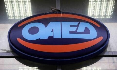 OAEΔ: Υποβολή ηλεκτρονικών αιτήσεων για δωρεάν πρόσβαση 50.000 ανέργων σε πλατφόρμα εκπαίδευσης