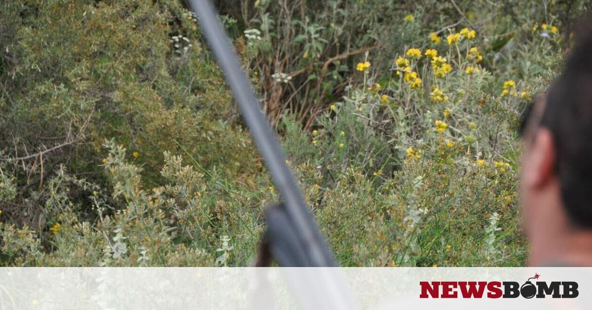 Τραγωδία στις Μηλιές: Πέρασε τον φίλο του για αγριογούρουνο και τον σκότωσε – Newsbomb – Ειδησεις