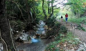 Η γραφική Παύλιανη και το εντυπωσιακό πάρκο αναψυχής στις πηγές του Ασωπού