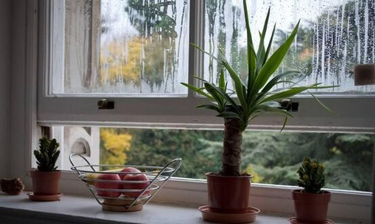 Πέντε συμβουλές για να είναι το σπίτι μας ζεστό και ο αέρας του καθαρός όλο τον χειμώνα