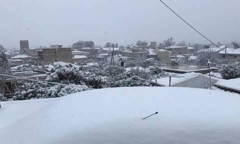 Καιρός - Αρνιακός: Το έστρωσε στα ορεινά της χώρας, πού θα χιονίσει το Σαββατοκύριακο