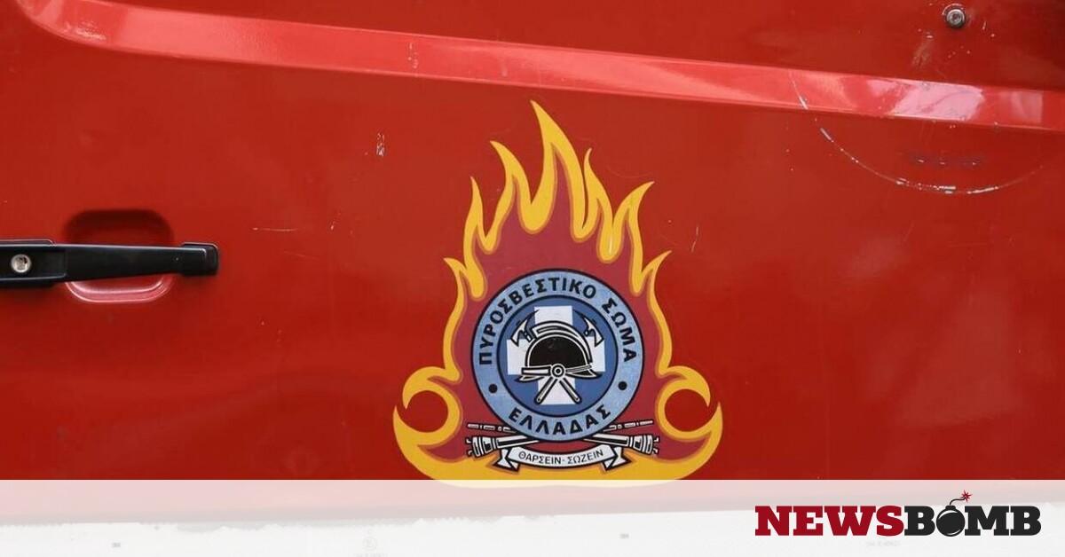 Φωτιά τώρα σε δασική έκταση στο Δήμο Λουτρακίου – Αγίων Θεοδώρων – Newsbomb – Ειδησεις