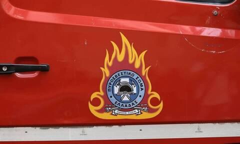 Φωτιά τώρα σε δασική έκταση στο Δήμο Λουτρακίου – Αγίων Θεοδώρων