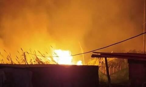 Φωτιά - Αχαΐα: Κινδυνεύουν σπίτια και εγκαταστάσεις με ζώα (vid)