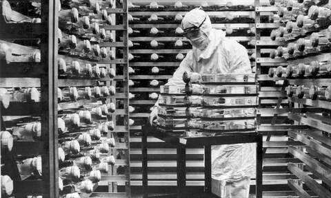 Εμβόλιο Pfizer: Με κομμένη την ανάσα η ανθρωπότητα - Πότε φτάνει στην Ευρώπη η «ένεση ελπίδας»