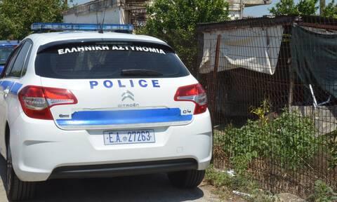 Ηράκλειο: Συνελήφθη άνδρας που πυροβόλησε και σκότωσε σκύλο