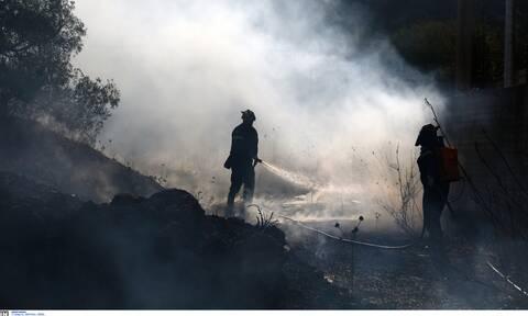 Τραγωδία στη Μάνη: Κάηκε ζωντανή, ενώ προσπαθούσε να κάψει χόρτα