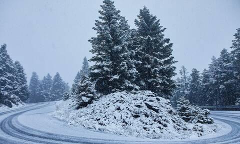 Καιρός - Αρνιακός: Θα έχουμε χιόνια τα Χριστούγεννα; Ναι, αλλά... (video)