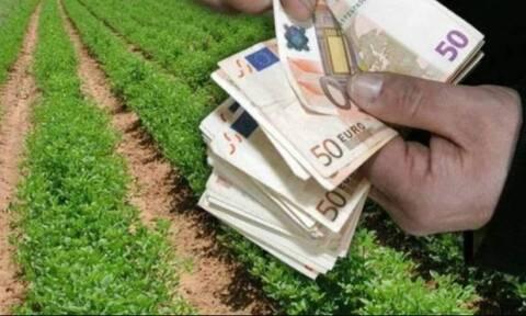 Αγρότες: Πληρωμές 800 εκατ. ευρώ μέχρι τέλος του έτους - Ποιοι θα πάρουν χρήματα και πότε
