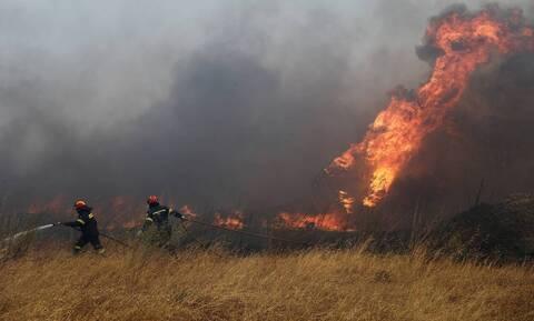Μεγάλη φωτιά στον Πάρνωνα – Επιχειρούν 81 πυροσβέστες