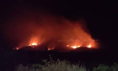 Φωτιά στη Χαραυγή Ερυμάνθου - Μεγάλη κινητοποίηση της Πυροσβεστικής