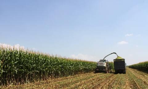 Επιστρεπτέα Προκαταβολή 4: Δικαιούχοι και οι αγρότες - Έως 30 Νοεμβρίου η προθεσμία των αιτήσεων