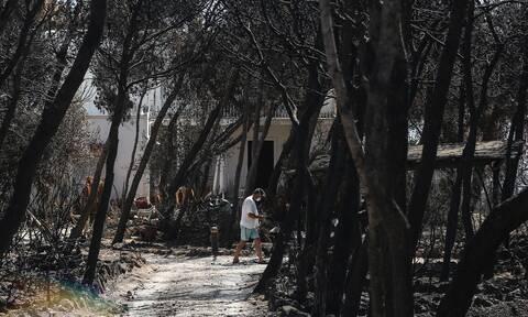Φωτιά στο Μάτι: Αναβάθμιση των κατηγοριών σε κακουργήματα ζητά η Βαρβάρα Φύτρου-Όλη η αίτησή της