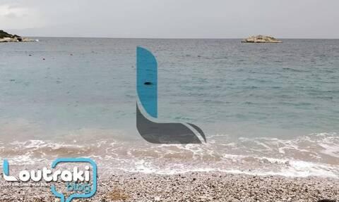 Λουτράκι: Απίστευτο! Δείτε τι ξέβρασε η θάλασσα (pic - vid)