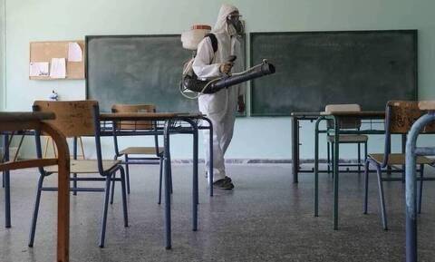 Κορονοϊός - Παπαευαγγέλου: Σε δύο ταχύτητες η άρση των μέτρων - Να ανοίξουν τα δημοτικά σχολεία