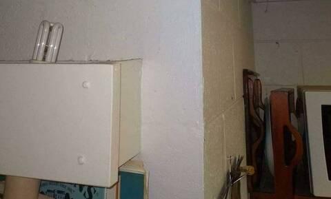 Απίστευτο: Δείτε το «τέρας» με το οποίο ζούσε στο σπίτι του άνδρας (pic)