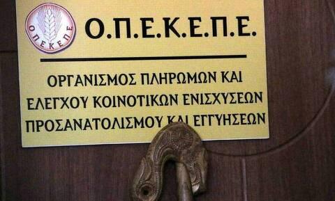 ΟΠΕΚΕΠΕ: Δόθηκαν τα επιπλέον δικαιώματα για τις επιδοτήσεις από το απόθεμα - Αναλυτικές οδηγίες