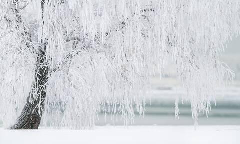 Δεκέμβριος, από 10ος μήνας τελευταίος του χρόνου: 5+1 πράγματα που πρέπει να ξέρεις για τον «χιονιά»