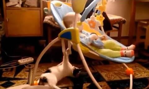 Όταν η γάτα κάνει babysitting στο μωρό