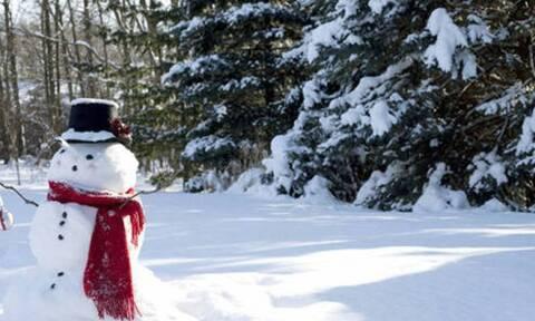 Καιρός Χριστούγεννα: Η πρώτη... αντίδραση του Τάσου Αρνιακού (Video)