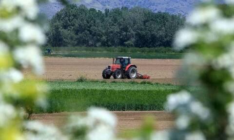 ΟΠΕΚΕΠΕ: Στους λογαριασμούς των αγροτών σήμερα η δεύτερη δόση της βασικής ενίσχυσης - Τι άλλο μένει