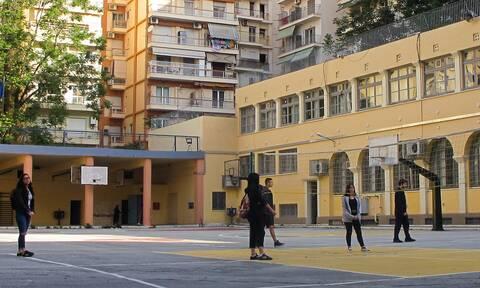 Σχολεία - «Βόμβα» Σαρηγιάννη: Αν ανοίξουν στις 8 Ιανουαρίου θα έχουμε αύξηση κρουσμάτων κατά 50%