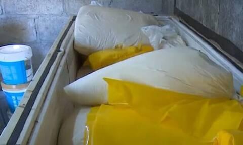 Κούβα: Χειροπέδες σε τέσσερις εργάτες γιατί έκλεψαν 1,3 τόνους... τυρί (pics)