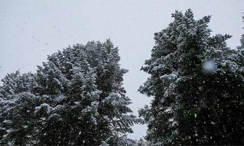 Καιρός: Κακοκαιρία εξπρές Παραμονή Πρωτοχρονιάς - Πού θα χιονίσει