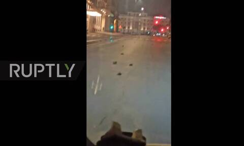 Ιταλία: «Σφαγή» στη Ρώμη - Εκατοντάδες νεκρά πουλιά στους δρόμους της πόλης (vid)