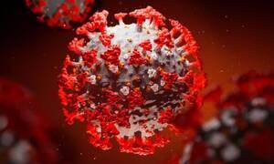 В Греции выявлен «британский» штамм коронавируса