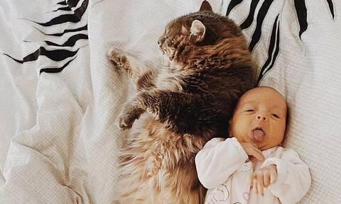 Αυτά τα μωρά δεν αποχωρίζονται τη γάτα τους (pics)