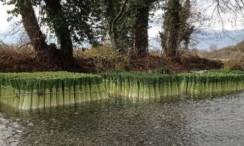 Ο ποταμός των πράσων στην Δωροθέα Πέλλας