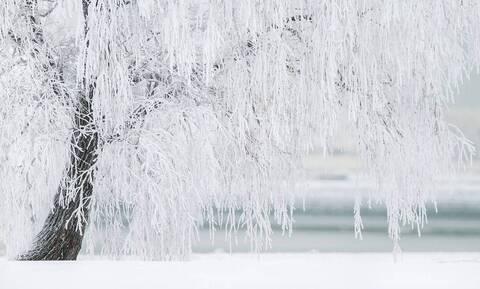 Καιρός - Λαγουβάρδος στο Newsbomb.gr: Έρχεται χιονάς - «Στα λευκά» και η Αττική; Αναλυτικοί χάρτες
